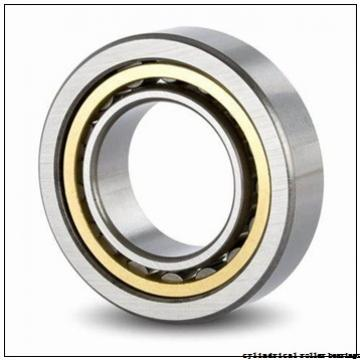 Toyana NUP3072 cylindrical roller bearings