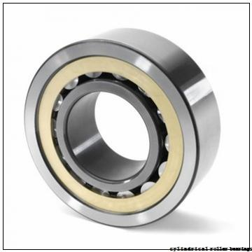 850 mm x 1120 mm x 118 mm  KOYO NU19/850 cylindrical roller bearings